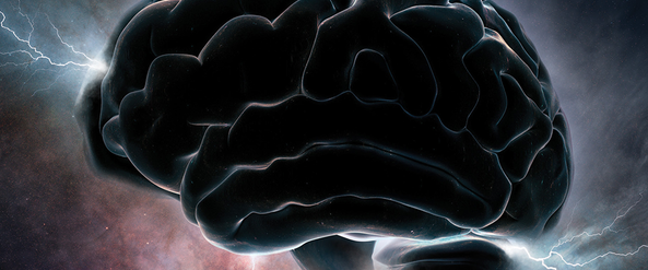 Seven books on the fascinating human brain [reading list]