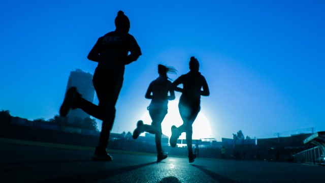 Endocannabinoid Signaling ACts To Boost Memory After Exercise