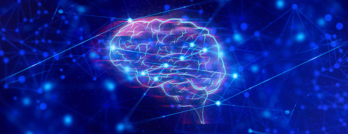 """What is """"representation"""" in the human brain and AI systems?"""