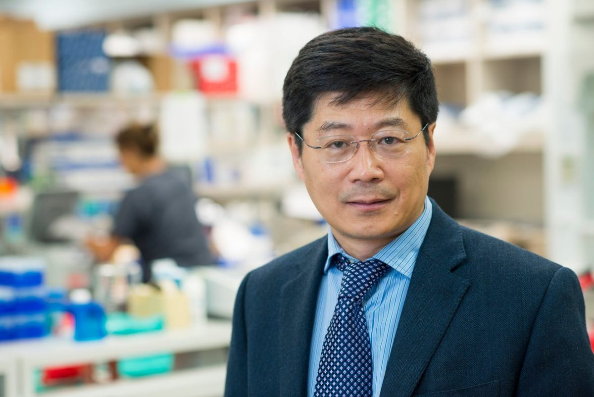 Federal grant could help researchers from Mayo unlock mysteries of Alzheimer's disease